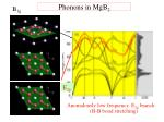 phonons in mgb 2