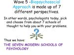 wave 5 biopsychosocial approach is made up of 7 different perspectives