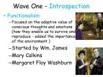 wave one introspection10