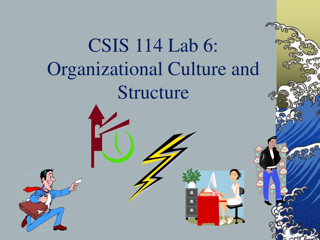 csis 114 lab 6 organizational culture and structure l.