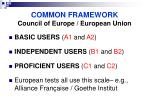 common framework council of europe european union