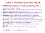 cardinal movements of fetal head