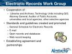 electronic records work group