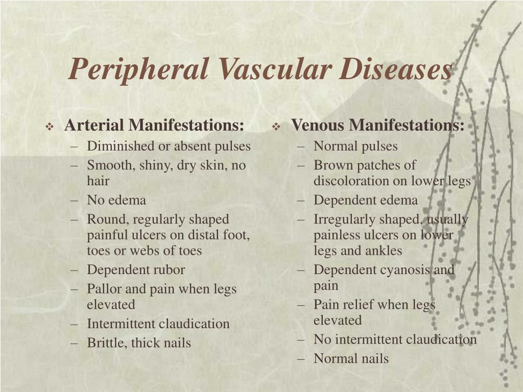peripheral vascular diseases l.