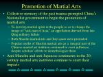 promotion of martial arts
