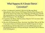 what happens at a senate district convention14