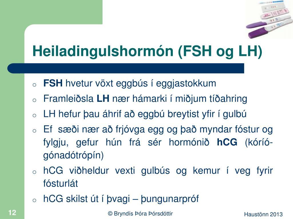 Heiladingulshormón (FSH og LH)