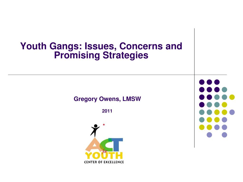 youth gangs issues concerns and promising strategies l.