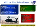 millimeter wave seekers sensors