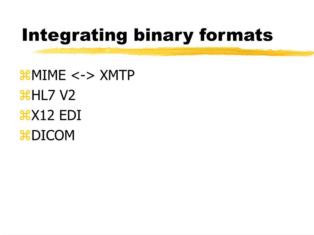 Integrating binary formats