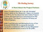 the healing journey a word about the project partners