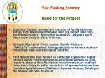 the healing journey need for the project
