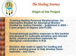 the healing journey origin of the project