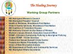 the healing journey working group partners