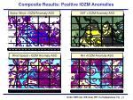 composite results positive iozm anomalies