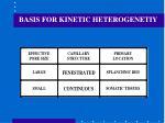 basis for kinetic heterogenetiy
