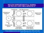 multicompartmental model of inulin and urea kinetics