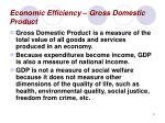 economic efficiency gross domestic product