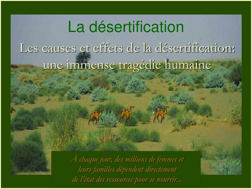 la d sertification l.