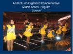 a structured organized comprehensive middle school program synergy