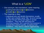 what is a lion
