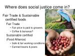 where does social justice come in