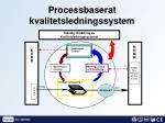 processbaserat kvalitetsledningssystem32