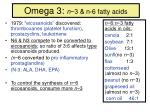 omega 3 n 3 n 6 fatty acids
