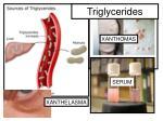 triglycerides9