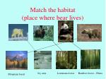 match the habitat place where bear lives