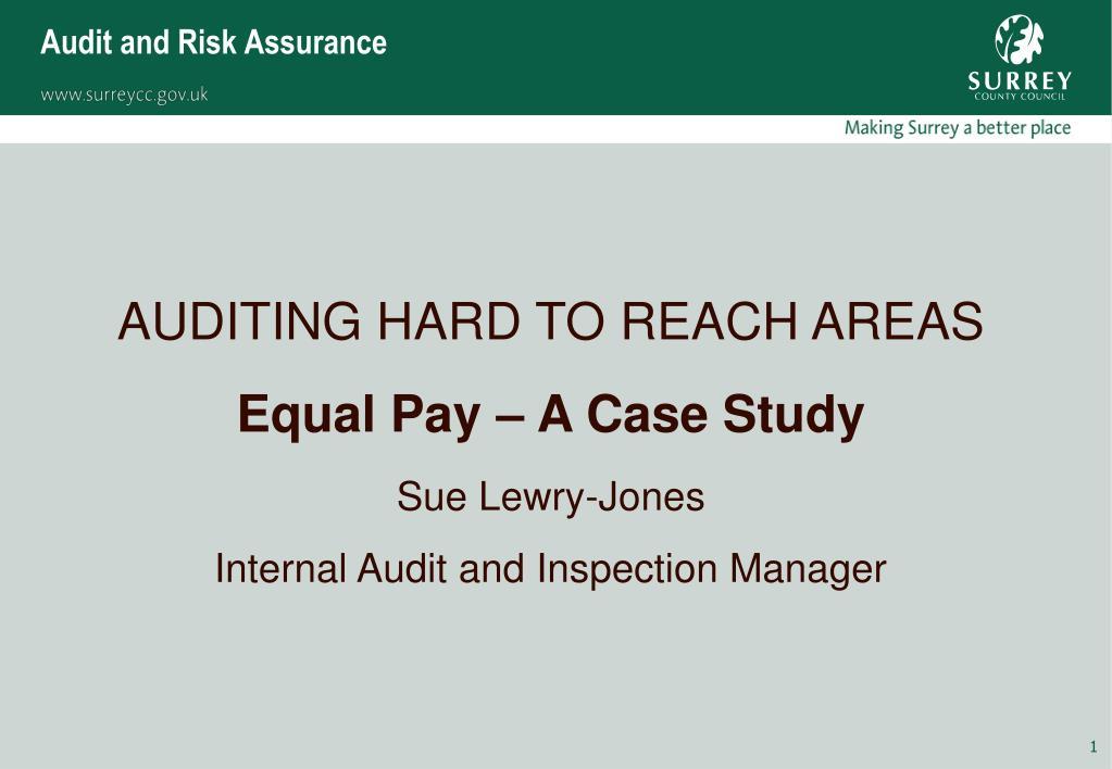 audit and risk assurance l.