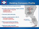 holding company profile