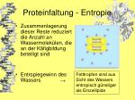 proteinfaltung entropie17