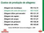 custos de produ o de silagens