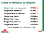 custos de produ o de silagens17