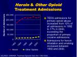 heroin other opioid treatment admissions