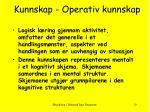 kunnskap operativ kunnskap
