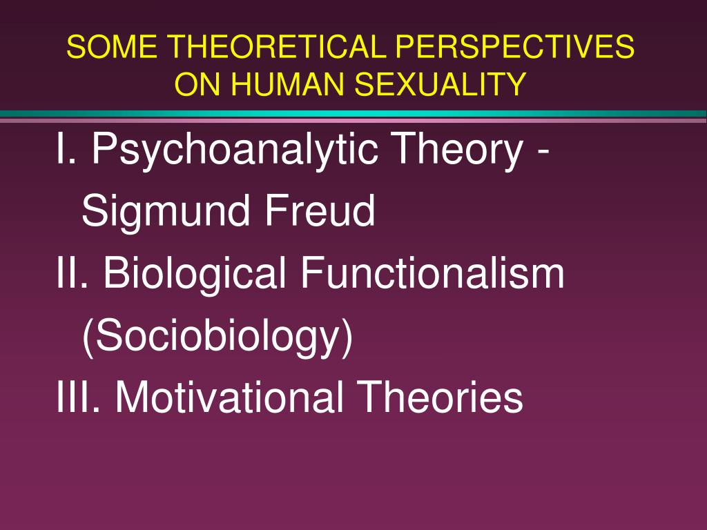 some theoretical perspectives on human sexuality l.