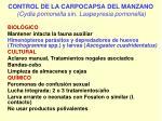 control de la carpocapsa del manzano cydia pomonella sin laspeyresia pomonella