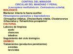 control del minador circular del manzano y peral leucoptera malifoliela sin cemiostoma scitella