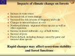 impacts of climate change on forests