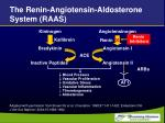 the renin angiotensin aldosterone system raas34