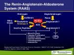 the renin angiotensin aldosterone system raas36