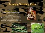 creepy crawley eats135