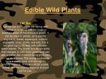 edible wild plants108