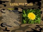 edible wild plants112
