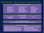 methodology internal audit conducted by dig