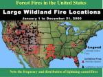 forest fires in the united states
