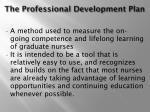 the professional development plan