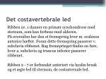 det costavertebrale led9